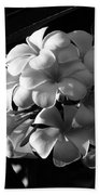 Plumeria Black White Beach Towel