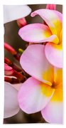 Plumerias Of Paradise 12 Beach Towel
