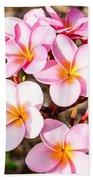 Plumerias Of Paradise 2 Beach Towel