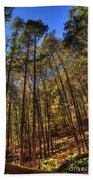 Pocono Trees Beach Towel