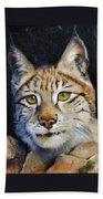 Pointed Advantage - Siberian Lynx Beach Towel