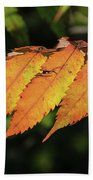Poison Sumac Golden Kickoff To Fall Colors Beach Towel