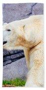 Polar Bear Walking Beach Towel