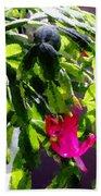 Polka Dot Easter Cactus Beach Towel