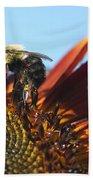 Pollinating Sunflower Seeds Beach Towel