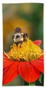 Pollinator Beach Towel
