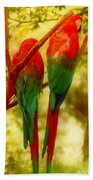New Orleans Polly Wants Two Crackers At New Orleans Louisiana Zoological Gardens  Beach Towel