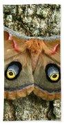 Polyphemus Moth Beach Towel