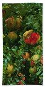 Pomegranates    Majorca Beach Sheet