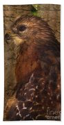 Ponce Inlet Hawk Beach Towel