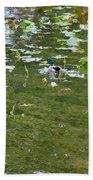 Pond 4 Beach Towel