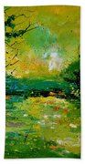 Pond 5431 Beach Towel