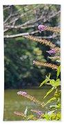 Pond At Norfolk Botanical Garden 12 Beach Towel