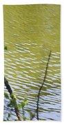 Pond At Norfolk Botanical Garden 8 Beach Towel