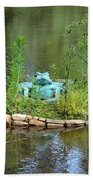 Pond Frog Beach Towel