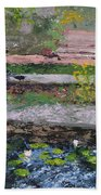 Pond In The English Walled Gardens Beach Towel