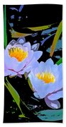 Pond Lily 17 Beach Towel