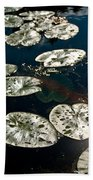Pond Sunset Beach Towel