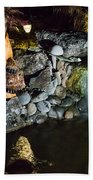 Pond Waterfall And Chuck The Bear Beach Towel