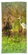 Pond Wildlife Beach Towel