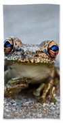 Pondering Frog Beach Towel by Laura Fasulo