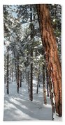 Ponderosa Winter Beach Towel