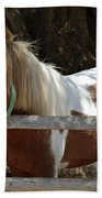 Pony Horse Beach Towel