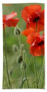 Poppies 2 Beach Towel