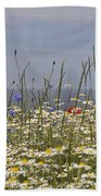 Poppies Et Al V Beach Towel