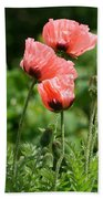 Poppies In My Garden Beach Towel