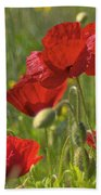 Poppies In Yorkshire Beach Towel