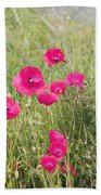 Poppy Blush Beach Towel