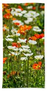 Poppy Fields - Beautiful Field Of Spring Poppy Flowers In Bloom. Beach Towel