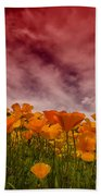 Poppy Fields Forever Beach Towel