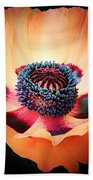 Poppy In The Darkness Beach Towel