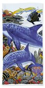Porpoise Reef Beach Towel