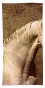 Portait Of A Stallion Beach Towel