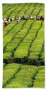 Porto Formoso Tea Gardens Beach Towel