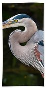 Portrait Of A Blue Heron Beach Towel