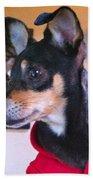 Portrait Of A Dog Beach Towel