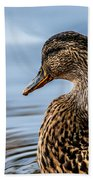 Portrait Of A Duck Beach Towel
