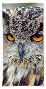 Portrait Of A Great Horned Owl II Beach Towel