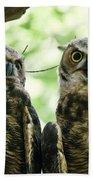Portrait Of A Pair Of Owls Beach Towel