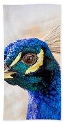 Portrait Of A Peacock Beach Towel