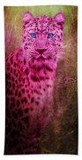 Portrait Of A Pink Leopard Beach Towel