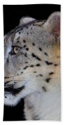 Portrait Of A Snow Leopard Beach Towel