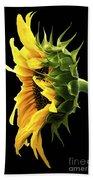 Portrait Of A Sunflower Beach Sheet