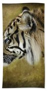 Portrait Of A Tiger  Beach Towel