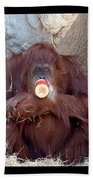 Portrait Of An Orangutan Beach Towel
