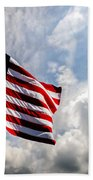Portrait Of The United States Of America Flag Beach Towel